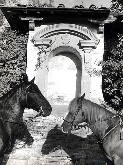Horses in front of Florentine altar piece shot by travel and lifestyle photographer Angela Cappetta using an analog Leica and real film.